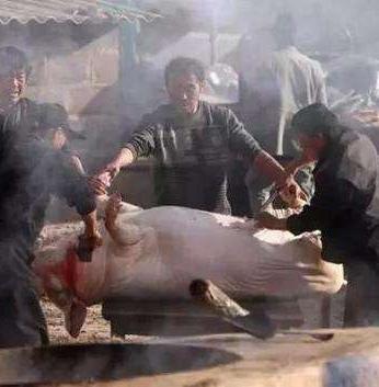 被坑的赌徒就像被杀的猪 只是杀猪方式换了